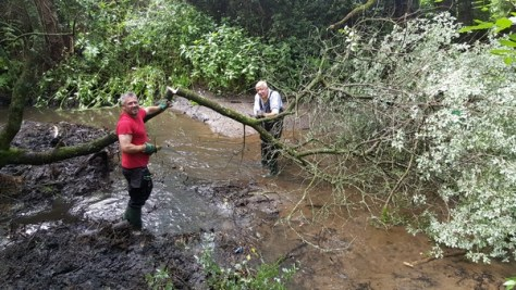 Volunteers working in the stream