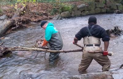 2012-12-06 stream blockage