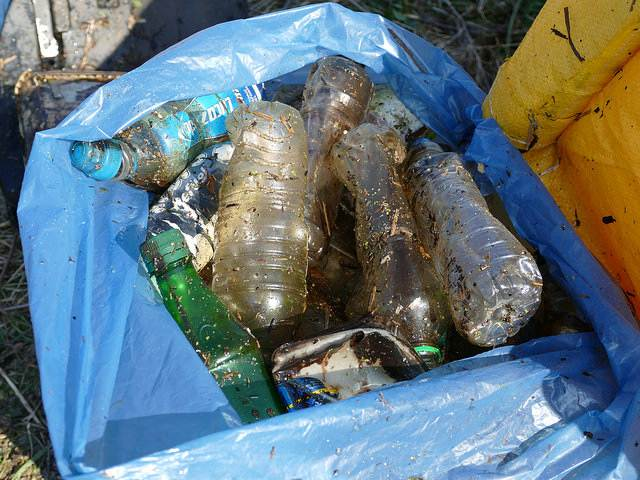 discarded plastic drinks bottles