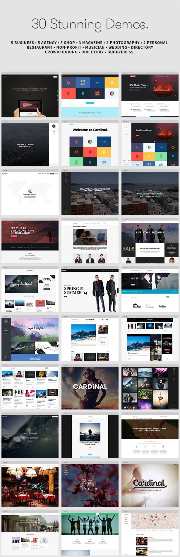 Cardinal - WordPress Theme - 10