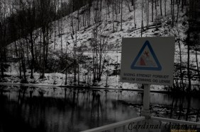 The sign informs you that you're not allowed to swim between the dam & the lens. Don't worry, I prefer swimming during the summer anyway! Nydalsdammen, winter. Nydalsdammen is the name of the dam outside the main entrance of Opera Software.