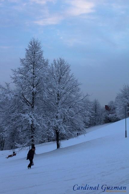 winter-oslo_8060
