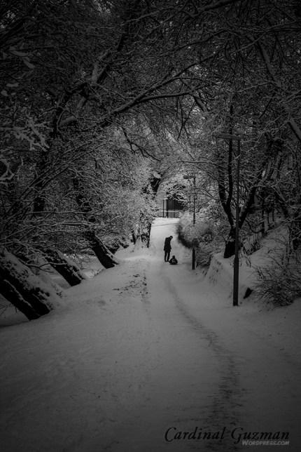 winter-oslo_8067