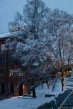 winter-oslo_8120