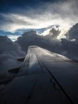 fly_6766