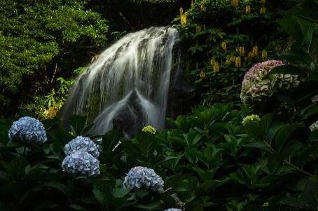 waterfall-4490-2.1000x665