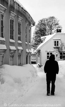 Winter scene in black & white, Tønsberg.