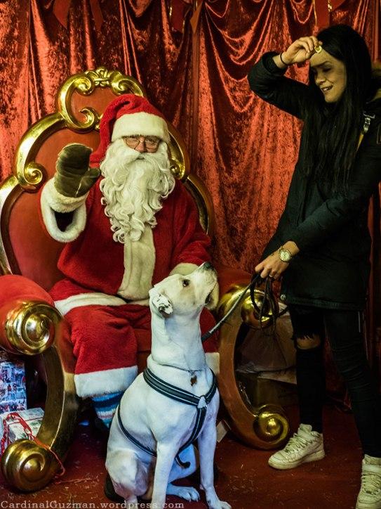 Santa, dog and a model.