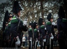 Guards at the Royal Palace.