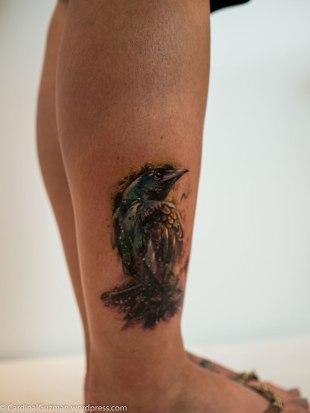 Hummingbird by Paul Owen.