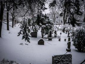 Vår Frelsers Gravlund (Dems Frelsers Gravlund i mitt tilfelle) / Our Saviour's Cemetery (Their Savior's Cemetery in my case).