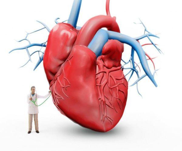Нарушение Внутрижелудочковой Проводимости на ЭКГ: Диагностика