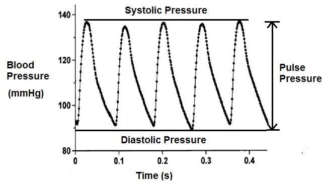 pulse pressure2