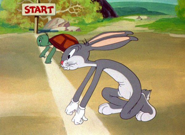 tortoise hare starting line