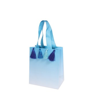 tassel blue gift bag
