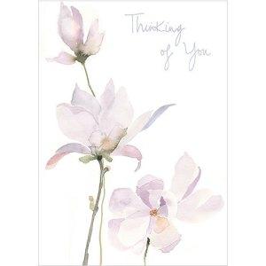 Thinking of You Magnolia