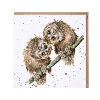 Two Heads are Better than One Owl card