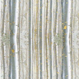 winter walk birch gift wrap