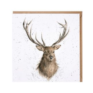 Portrait of a Stag card