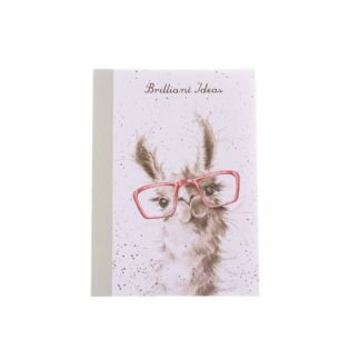 A6 Llama Notebook No Prob-Llama
