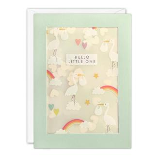 New Baby Storks Shakies Card