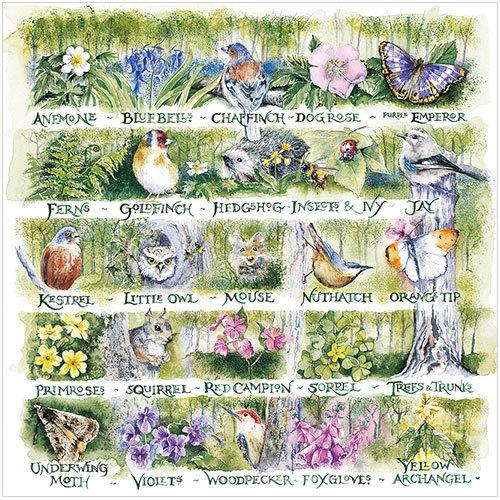 Woodland Alphabet Val Goldfinch