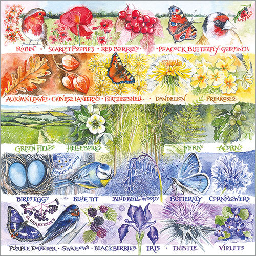 Rainbow of Nature Val Goldfinch