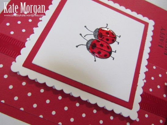 Love You Lots, Ladybugs, Feminine Birthday Card, #stampinup, @cardsbykate