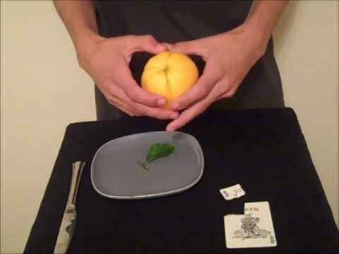 How to Do David Blaine's Card in Lemon Card Trick