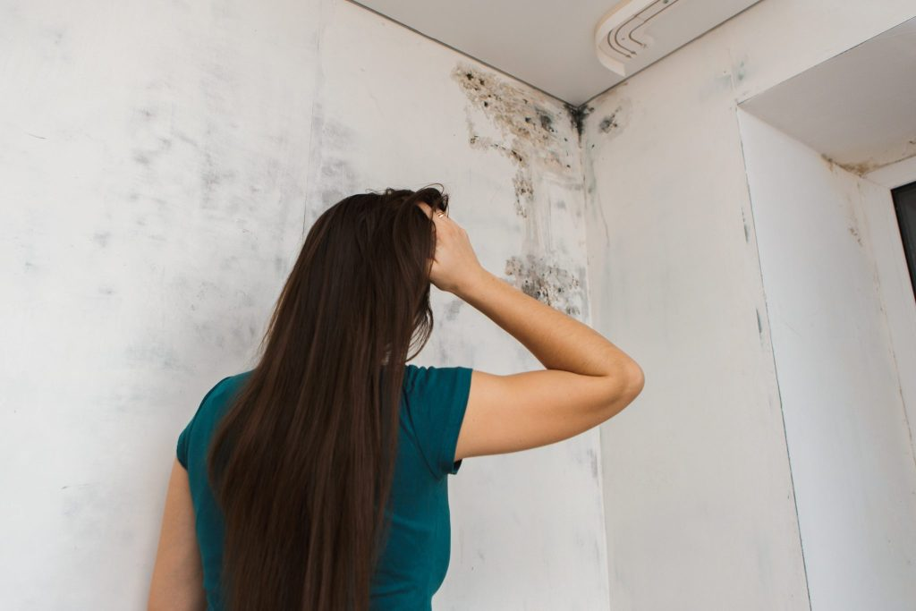 The Adverse Effects Of Mold On Seniors