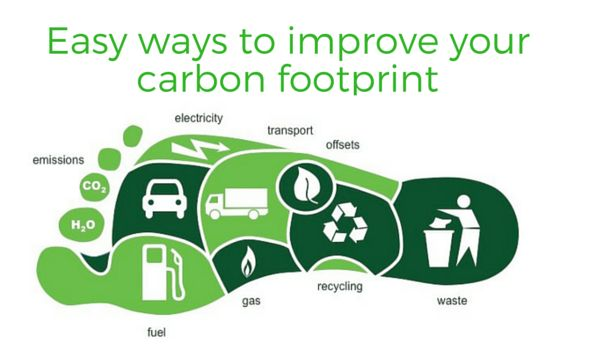 easy ways to improve your carbon footprint can also improve your brain health