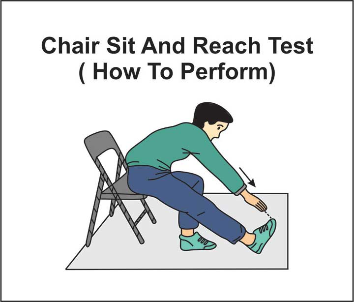 Sit and Reach Wheelchair Exercises