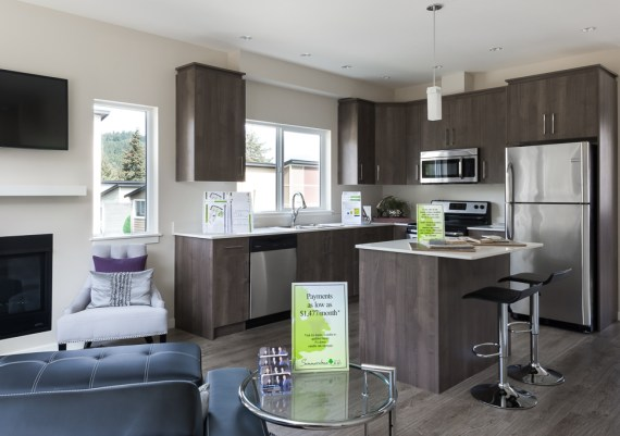 Silver - Limona Group - Summerstone Phase 2