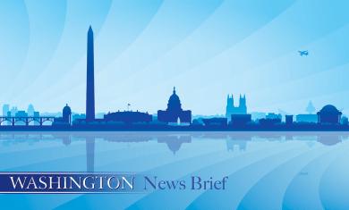 washington-news-brief