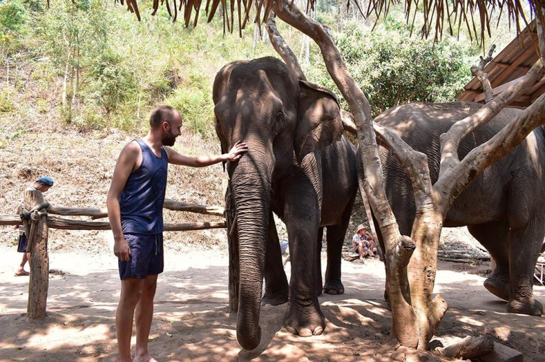 Chiang Mai trekking: a stop at an elephant sanctuary