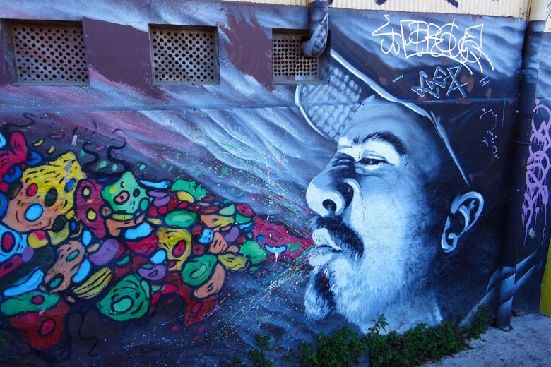 This piece is a collaboration between Cuellimangui and another street artist, Andres Serna Pintura Artistica