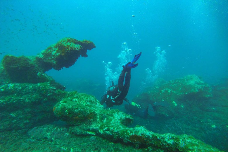 Malta is one of the best places in Europe to try scuba diving