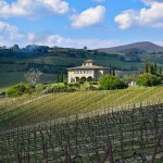 Decugnano Dei Barbi is one of the best wineries in Umbria