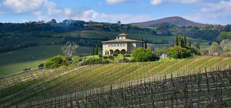 Decugnano Dei Barbi is one of the best wineries in Umbria