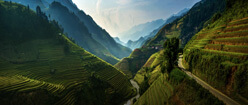 A picture of green mountains in asia