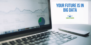 Your Future Is In Big Data