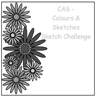 CAS Colours & Sketches Challenge #31