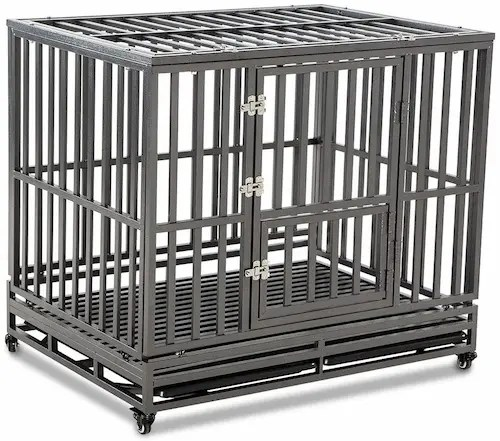 Best Stainless Steel Dog Crate USA 2021