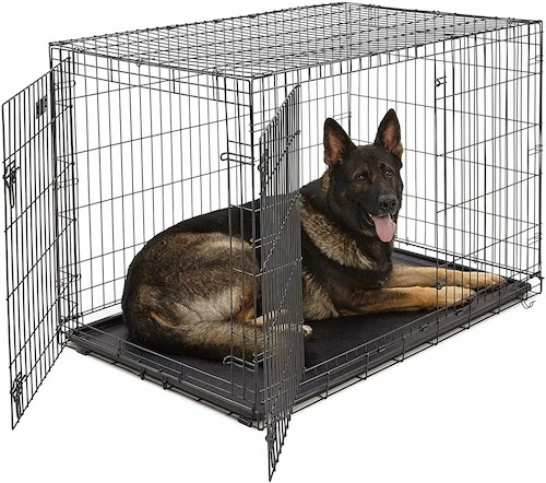 Best 48 inch Dog Crate USA 2021