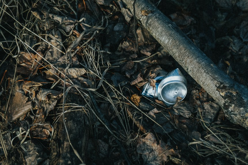 Can of beer crushed and left in the forest.