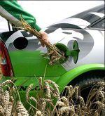 Les biocarburants sont responsables de la crise alimentaire, selon la Banque Mondiale