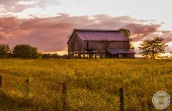 Old Kentucky Barn
