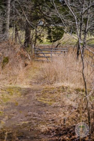 Old Gate on Trail WM