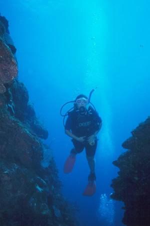 Valentines Dive Center Bahamas Harbour Island Eleuthera
