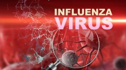 CARPHA urges region to reduce risks of flu virus